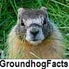 see groundhog facts